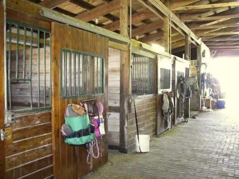 Boarding Stalls