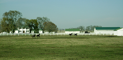 Road front view of Royal Creek Horse Farm